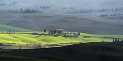 La Val d'Orcia in inverno (Fil.ippo) Tags: green rural landscape country hill tuscany pienza toscana valdorcia filippo d7000 filippobianchi