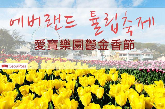 【韓國/景點】韓國人超愛的愛寶樂園鬱金香節(에버랜드 튤립축제)便宜購票與玩樂攻略