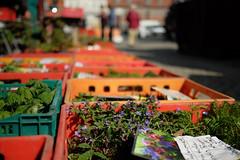 Markttag (JKLensman) Tags: markt marktplatz waren fujixt1 fujixf1423