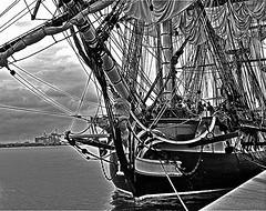 Philadelphia Tall Ships (PHOTOPHANATIC1) Tags: philadelphia tallships