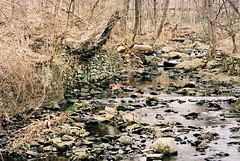 Wissahickon Creek (David Swift Photography Thanks for 15 million view) Tags: trees philadelphia nature water 35mm rocks forrest streams nikonfm2 creeks creekbed wissahickoncreek kodakportra davidswiftphotography