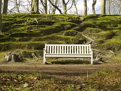 It's a bench (rvroel) Tags: netherlands bench moss dune hague the clingendael