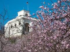 Glorious Gloriette (D-j-L) Tags: flowers sky canon garden spring prague blossom flag czechrepublic cz gloriette s100 usembassy hlavnmstopraha