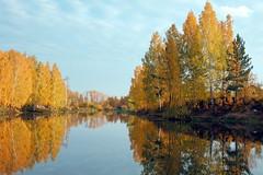 DSC_6079 (Rustam Bikbov) Tags: autumn september 2012    sverdlovskoblast