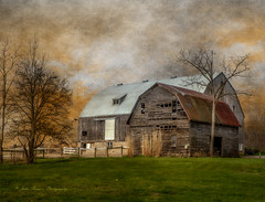 Barn on barn. (John Ronson Photography) Tags: ca ontario canada barn farm textures sincity jaijohnson