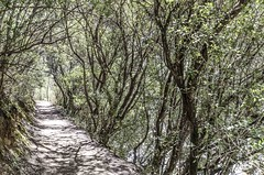 1304162592 (jolucasmar) Tags: viaje primavera andaluca paisaje contraste ros mirador curso puestasdesol cazorla montaas cuevas bosques composicion panormica viajefotof