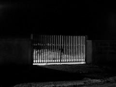 Gate (fotofonino) Tags: street blackandwhite monochrome noir gates olympus bn bnw biancoenero cancelli mft epl3