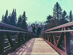 (Meg4nnn) Tags: park travel bridge family vacation nature landscape outside outdoors spring jumping woods scenery hiking roadtrip adventure explore jumpingphoto iphonephoto vsco