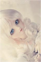 Blue Bird (L e n a ) Tags: doll bjd superdollfie volks russian mamu halyna yosd yotenshi