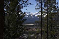 Banff, Tunnel Mountain Hike, April 9 2016 (2)_e_apr_11_16 (Velates) Tags: canada mountains alberta rockymountains banffnationalpark