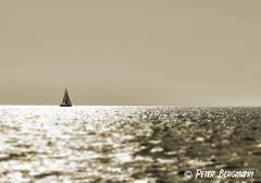 sailing (Peter Bergmann - Fotograf) Tags: ocean travel sea summer sky monochrome sepia boat mare sailing ship horizon maritime sailingship sailer seafaring