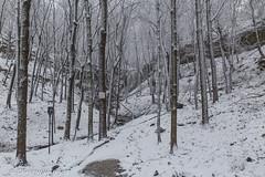 Sherman Winter Wonderland (awaketoadream) Tags: winter white snow ontario canada waterfall hamilton niagara falls southern snowing sherman escarpment ancaster snowwy