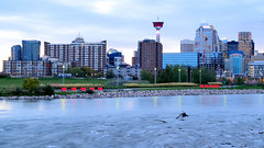 Calgary shot with the Zeiss 50mm f/1.4 (Mathieu N. J. Langlois) Tags: canada calgary river cityscape alberta bowriver calgarytower