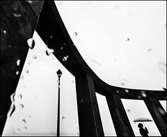 F_DSC4028-BW-1-Nikon D800E-Nikkor 14mm F2.8 D-May Lee  (May-margy) Tags: portrait bw silhouette umbrella airplane streetlamp taiwan raindrops  raining  restarea           repofchina nikkor14mmf28d  newtaipeicity maymargy nikond800e maylee  mylensandmyimagination streetviewphotographytaiwan  naturalcoincidencethrumylens  linesformandlightandshadows  fdsc4028bw1