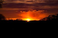 Sunset in Neuenkirchen (Zarrentin am Schalsee) (betadecay2000) Tags: trees sunset red orange sun rot sol clouds germany deutschland abend wolken sonne rood tyskland bume wetter abendrot mecklenburgvorpommern schalsee zarrentin thyskland