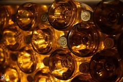 Golden Battles (Peter Krasznai) Tags: 50mm golden photo wine related tokaji battles tokaj rokkor vintagelens aszu puttonyos szerencs asz minoltamcrokkorpg kraszipeti rpdhegy sonya7ii minoltarokkorxpg50mm14