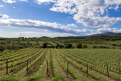 Capraia F.na 1 (maxis965) Tags: nuvole cielo toscana viti sereno