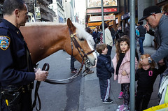 Who said I wanted a pony? (nsaurat-photo) Tags: street nyc horse newyork streetphotography police pony