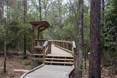 DSC_2700 (Bob Carlson) Tags: park state falling waters
