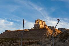 (o texano) Tags: texas desert westtexas elcapitan guadalupemountainsnationalpark guadalupemountains chihuahuandesert
