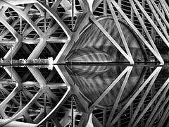 is still water a mirror or still water? (dan.boss) Tags: blackandwhite bw eye water valencia night mirror calatrava vlc santiagocalatrava ciudaddelasartesylasciencias museodelasciencias