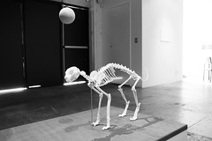 playing ball (Val in Sydney) Tags: art artwork sydney australia nsw biennale redfern australie carriageworks