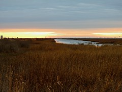 Edwin B. Forsythe National Widlife Refuge at Sunrise (Nature In a Snap) Tags: morning nature beauty sunrise nj calm atlantic serene saltmarsh forsythe nwr 2015 oceanville