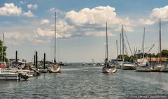 Mamaroneck Harbor (Concert_Photos_Magazine) Tags: usa newyork boats harbor waterfront unitedstatesofamerica boating harborisland westchester longislandsound westchestercounty mamaroneck mamaroneckharbor 13035857283