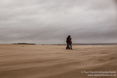 A windy walk on the beach at Tentsmuir Forest