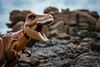 When Dinosaurs ruled the Earth (Reiterlied) Tags: brittany dino dinosaur flickr lego outdoor rex rock trex toy tyrannosaur