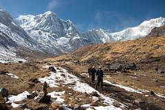 Annapurna South (Pooja Pant) Tags: nepal mountains beautiful trek abc annapurna annapurnabasecamp macchapuchre