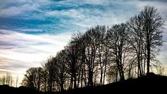 goldegg (bernd.kranabetter) Tags: winter advent goldegg