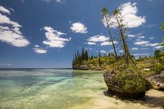 21112015-DSC_5580 (ciol46) Tags: island ile nouvellecaldonie newcaledonia caledonia mar loyalty nece caldonie loyaut nc