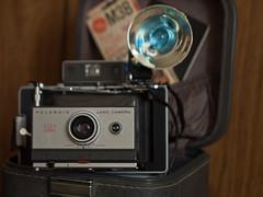 Polaroid Automatic 101 (Anne Abscission) Tags: camera film analog project polaroid availablelight depthoffield vintagecamera restoration landcamera flashgun industar61 polaroid101 automatic101 olympuspenep1