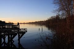 Perched Alone (Timo Juhani) Tags: sunset alone sitting bc lonely fraser mapleridge fraserriver haney porthaney porthaneywharf