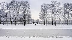 avenue (berberbeard) Tags: schnee winter germany deutschland photography fotografie linden hannover sonw itsnotatrick berberbeard berberbeardwordpresscom ilce7m2