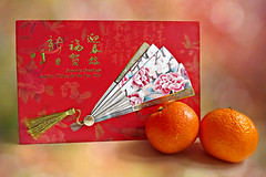 Happy Lunar New Year (February 8th 2016) (Through Serena's Lens) Tags: life new red orange colors fruit happy still holidays bokeh year chinese card cny clementine greeting yearofthemonkey