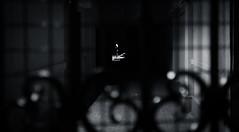 Behind Bars | Day 185 / 365 (marcin baran) Tags: street city light people urban blackandwhite bw woman house black streets building monochrome architecture night standing dark person evening stand blackwhite bars gate fuji darkness pov candid perspective corridor streetphotography poland polska tunnel stranger human spy fujifilm streetphoto 365 behind element gliwice candidphotography x100 100t 365project marcinbaran
