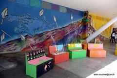 BR04 SP 0147 (CZNT Photos) Tags: streetart brasil saopaulo graff brsil artmural alaincouzinet cznt