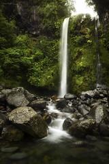 Dawson Falls, Egmont National Parkn New Zealand, North Island (Aaron Bishop Photography) Tags: green water rain weather island waterfall nationalpark country ngc falls nz aotearoa egmont dawsonfalls newzealandnorth aaronbishopphotography