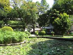 """Ho Chi Minh Ville: un petit parc au coeur de la ville <a style=""""margin-left:10px; font-size:0.8em;"""" href=""""http://www.flickr.com/photos/127723101@N04/24308941900/"""" target=""""_blank"""">@flickr</a>"""