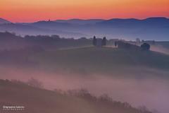 Foggy atmosphere (Agrippino Salerno) Tags: morning travel trees sky italy mist colors misty fog sunrise canon countryside foggy hills tuscany cypress pienza valdorcia vitaletachapel agrippinosalerno