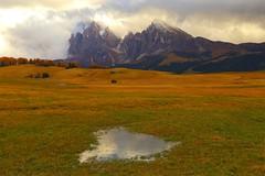 Seiser Alm - Alpe di Siusi _MG_2479m(1) (maxo1965) Tags: italy dolomites sdtirol sassopiatto seiseralm alpedisiusi sassolungo naturparkschlernrosengarten