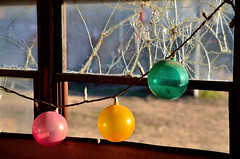 In Through The Out Door (Rural Roads Photography) Tags: bus abandoned oklahoma window christmaslights indoors forgotten bulbs cracked pawneecounty terlton nikond7000
