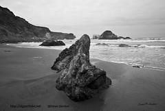 Sand Dollar Beach I BW (dave08g) Tags: california blackandwhite seascape landscape bigsur pacificocean coastal