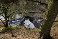 göhl 178 (beauty of all things) Tags: creek belgium bach belgien geul göhl lagueule