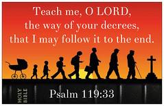 Psalm 119:33 (joshtinpowers) Tags: bible psalms scripture