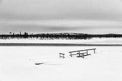 _DSC0453 (Alepan) Tags: finland finlandia lapponia circolopolareartico