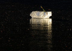 Ship of ice (windyhill623) Tags: winter sunlight white reflection ice blackbackground contrast frozen pond