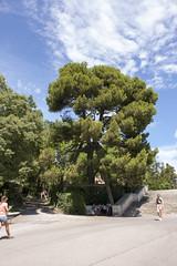 Rocher des Doms (rfzappala) Tags: france europe des avignon rocher languedoc doms 2015